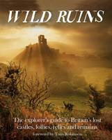 Cover for Wild Ruins  by Dave Hamilton