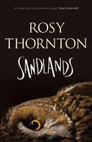 Cover for Sandlands by Rosy Thornton