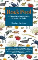 Cover for Rock Pool: Extraordinary Encounters Between the Tides  by Heather Buttivant