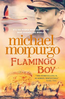 Cover for Flamingo Boy by Michael Morpurgo