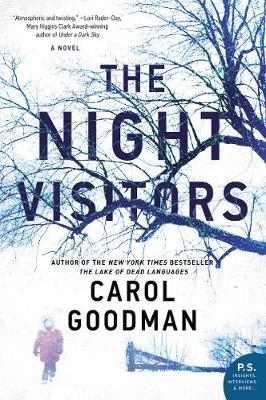 Cover for The Night Visitors A Novel by Carol Goodman