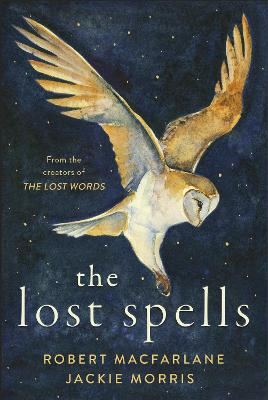 Cover for The Lost Spells by Robert Macfarlane, Jackie Morris