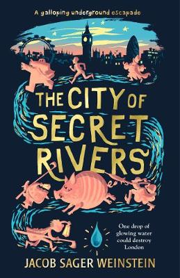Cover for The City of Secret Rivers by Jacob Sager Weinstein