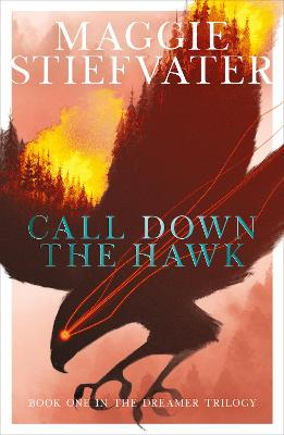 Cover for Call Down the Hawk by Maggie Stiefvater