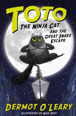 Cover for Toto the Ninja Cat and the Great Snake Escape by Dermot O'Leary