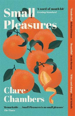 Cover for Small Pleasures by Clare Chambers