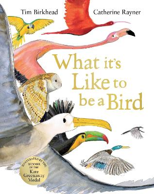Cover for What it's Like to be a Bird by Tim Birkhead