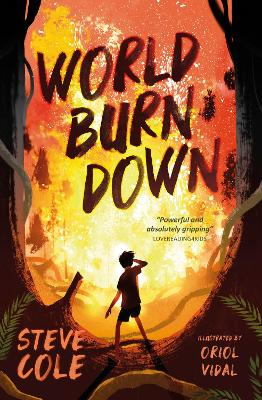 Cover for World Burn Down by Steve Cole