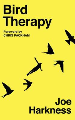 Cover for Bird Therapy by Joe Harkness