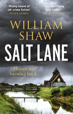 Cover for Salt Lane by William Shaw