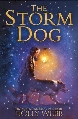 Cover for The Storm Dog by Holly Webb