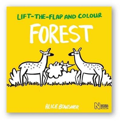 Cover for Lift-the-Flap and Colour Forest by Natural History Museum