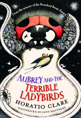 Cover for Aubrey and the Terrible Ladybirds by Horatio Clare