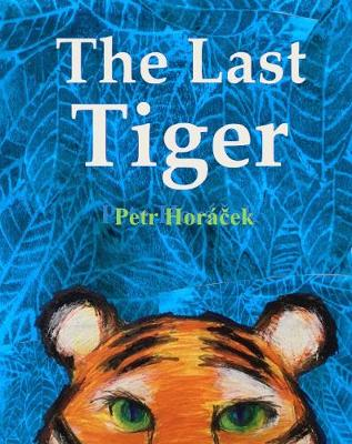 Cover for The Last Tiger by Petr Horáček
