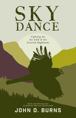 Cover for Sky Dance by John D. Burns