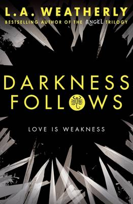 Cover for Darkness Follows by L. A. Weatherly