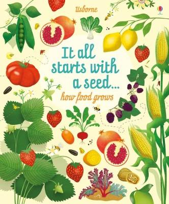 Cover for Big Picture Book How Food Grows by Emily Bone