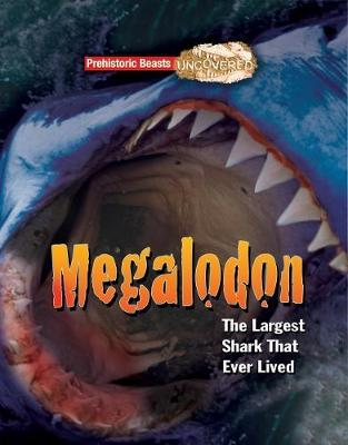 Megaladon Prehistoric Beasts Uncovered - The Largest Shark That Ever Lived
