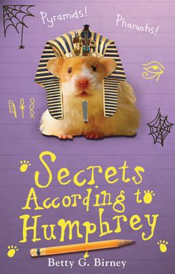 Cover for Secrets According to Humphrey by Betty G. Birney