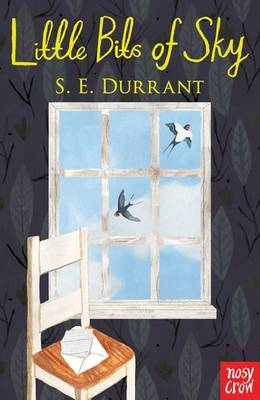 Cover for Little Bits of Sky by S. E. Durrant
