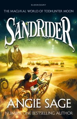 Cover for Sandrider A Todhunter Moon Adventure by Angie Sage