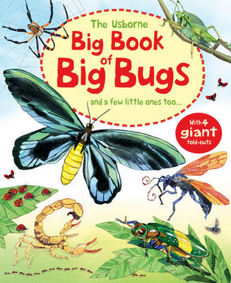 Cover for Big Book of Big Bugs by Emily Bone