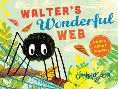 Cover for Walter's Wonderful Web by Tim Hopgood