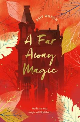 Cover for A Far Away Magic by Amy Wilson