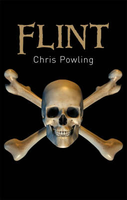 Cover for Flint by Chris Powling