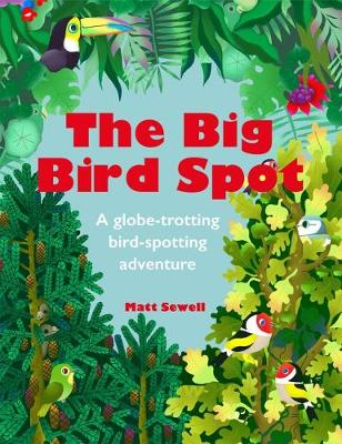 Cover for The Big Bird Spot by Matt Sewell