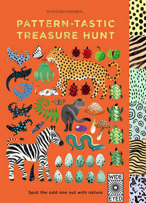 Pattern-Tastic Treasure Hunt Learn Your Colours with Nature