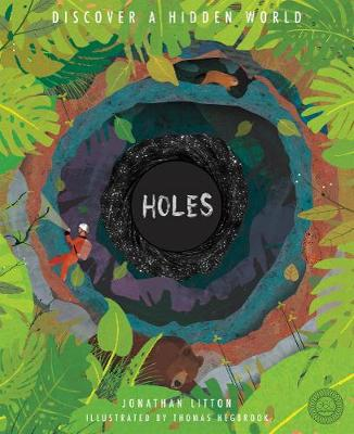 Cover for Holes by Jonathan Litton