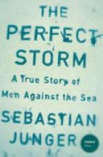 Cover for The Perfect Storm by Sebastian Junger