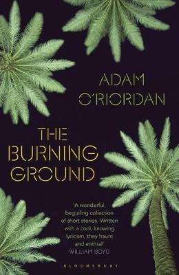 Cover for The Burning Ground by Adam O'Riordan