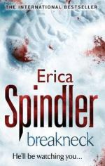 Cover for Breakneck by Erica Spindler