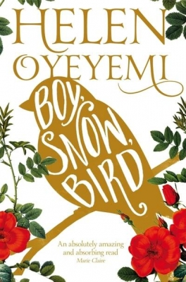Cover for Boy, Snow, Bird by Helen Oyeyemi