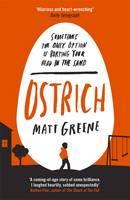 Cover for Ostrich by Matt Greene