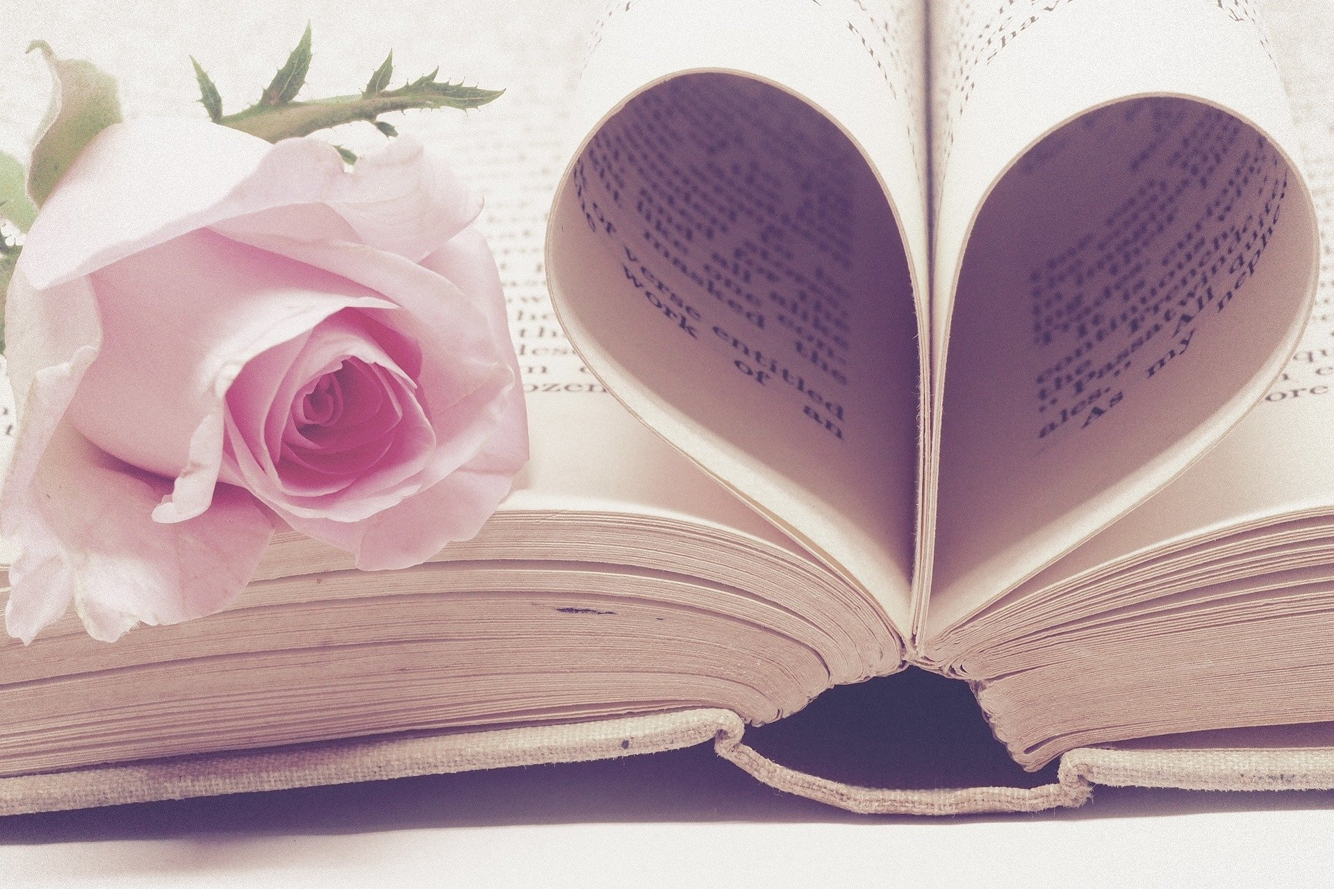 10 Romantic Books You Should Read This Valentine's Day!