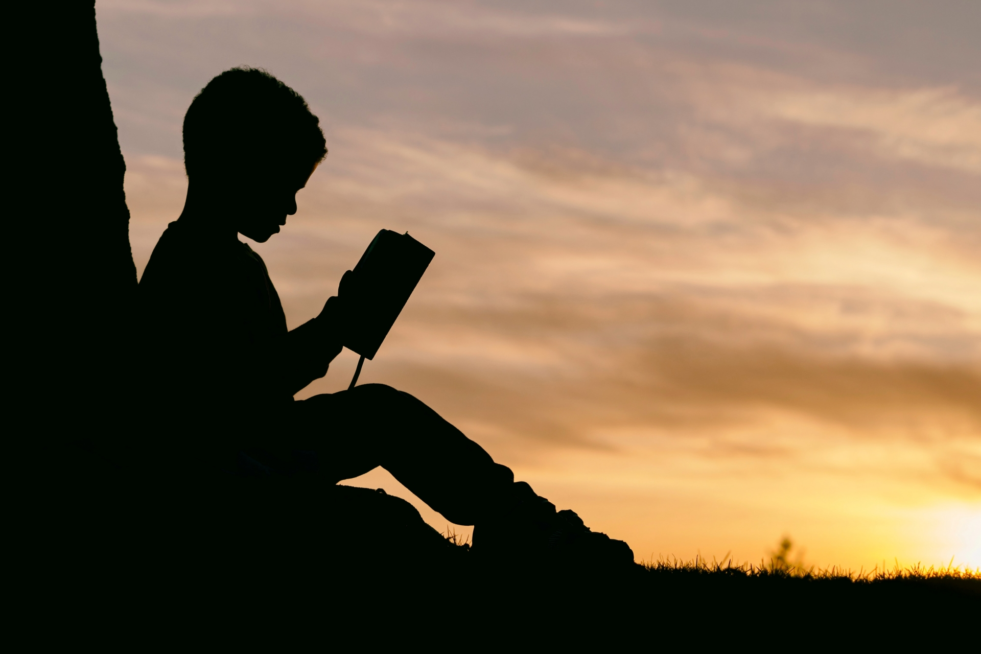 A Guide for Dyslexic Readers / Readers with Dyslexia