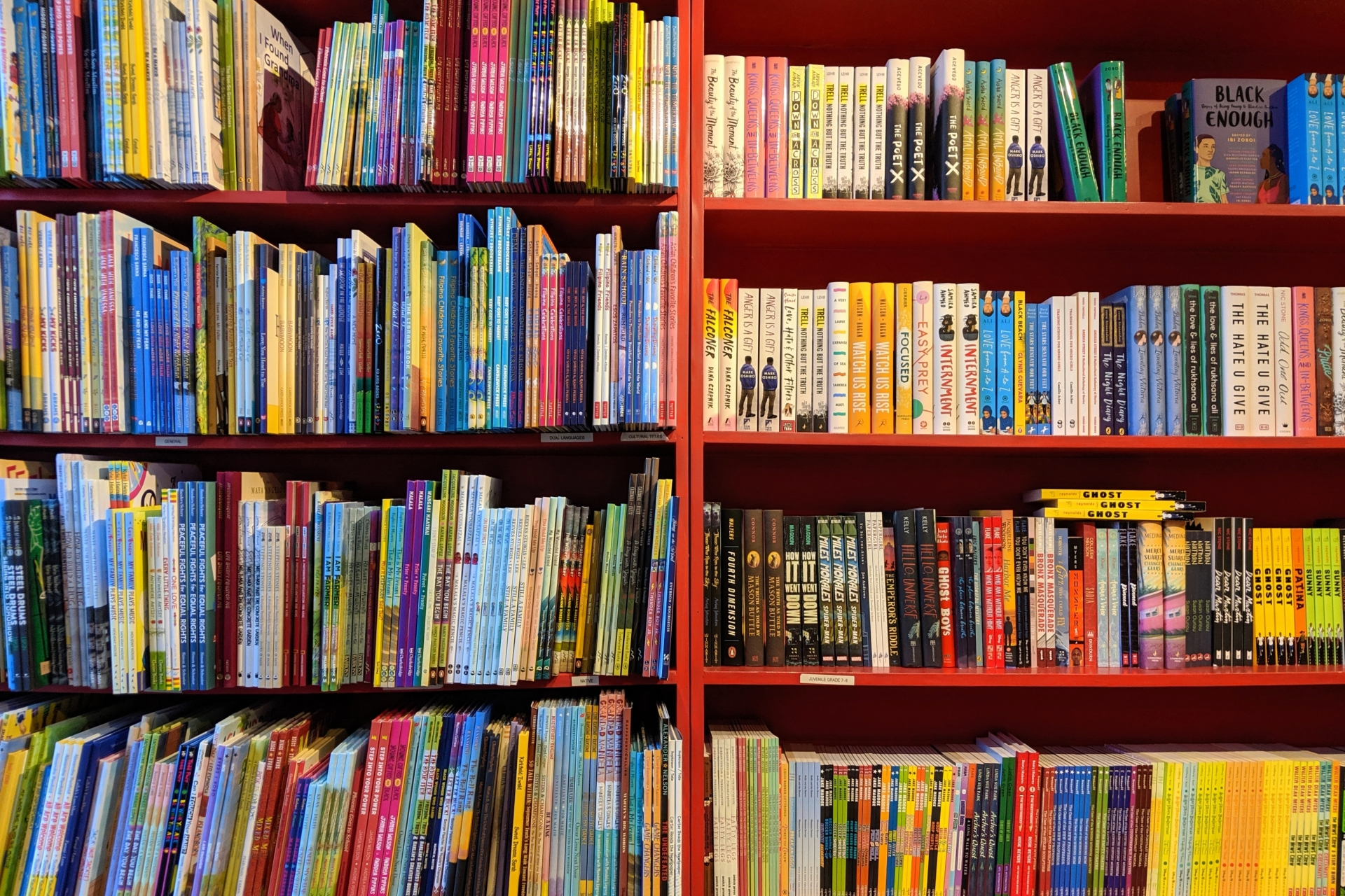 The Importance of Diversity in Children's Books