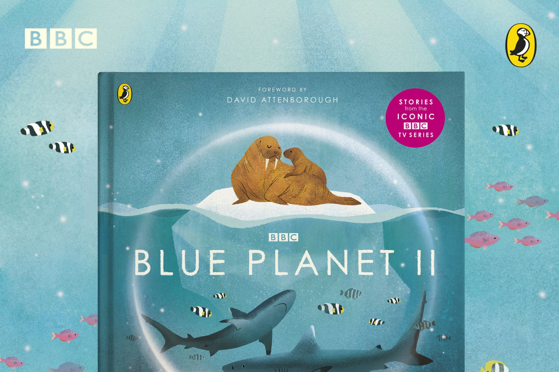 Blue Planet II – Interview with Leisa Stewart-Sharpe and Emily Dove