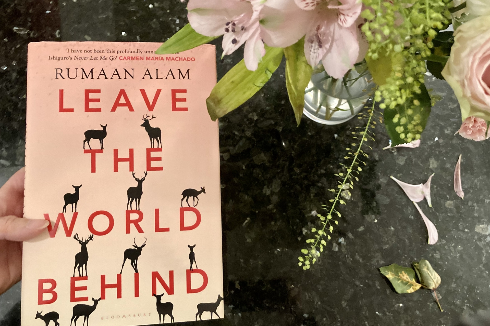 December 2020 Book Club Recommendation: Leave The World Behind by Rumaan Alam