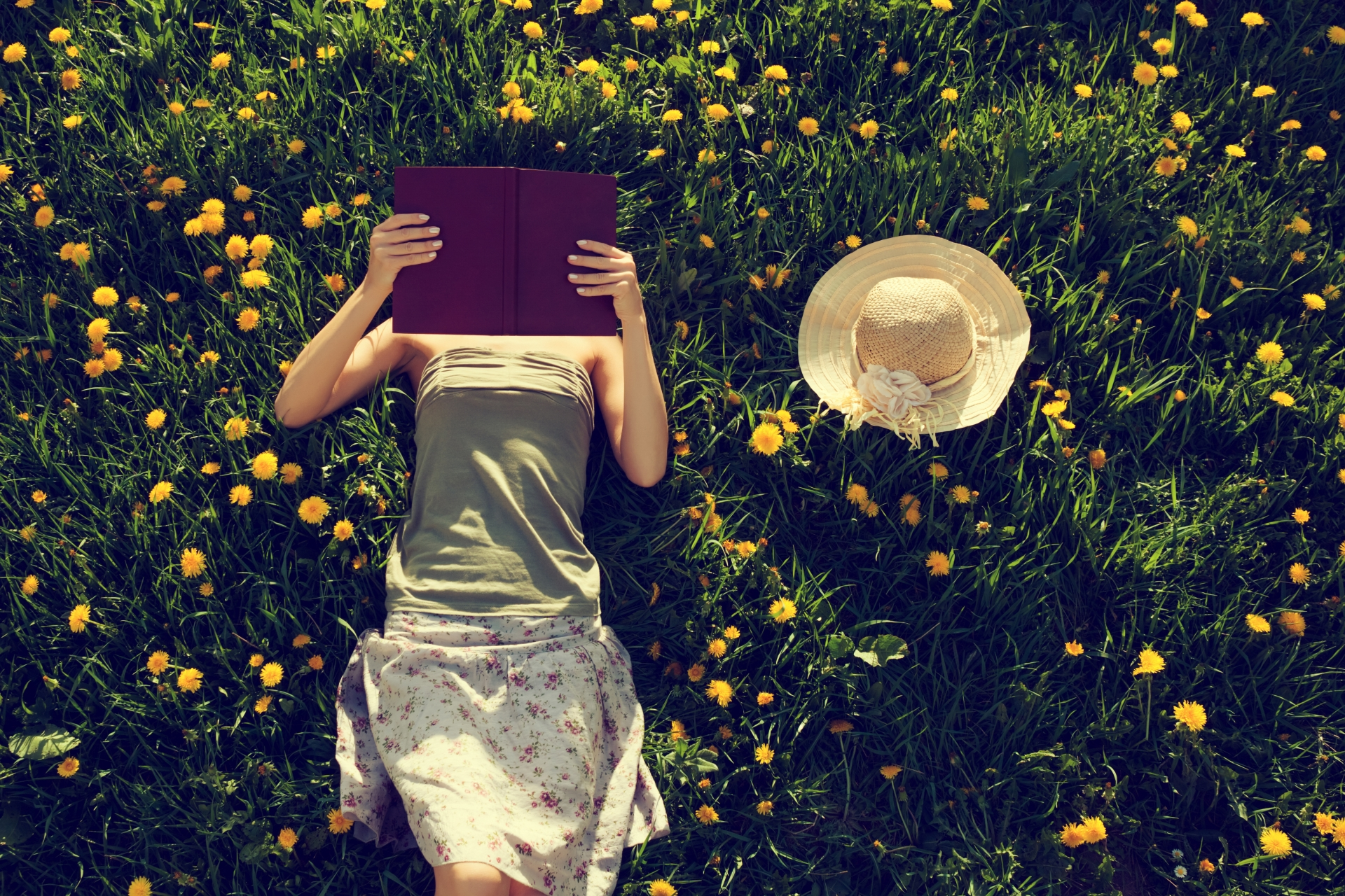 Summer Is Here - Feast Your Eyes on LoveReading's Ever-growing List of Summer Reading Recommendations