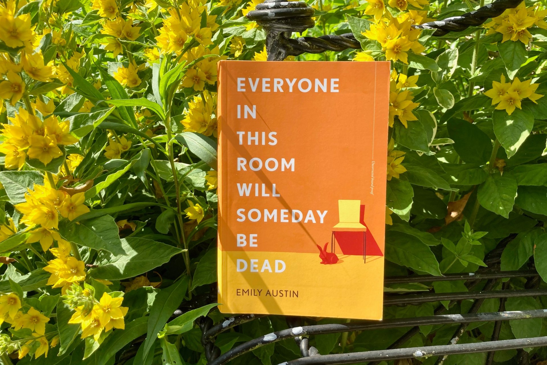 July 2021 Book Club Recommendation: Everyone in This Room Will Someday Be Dead by Emily Austin