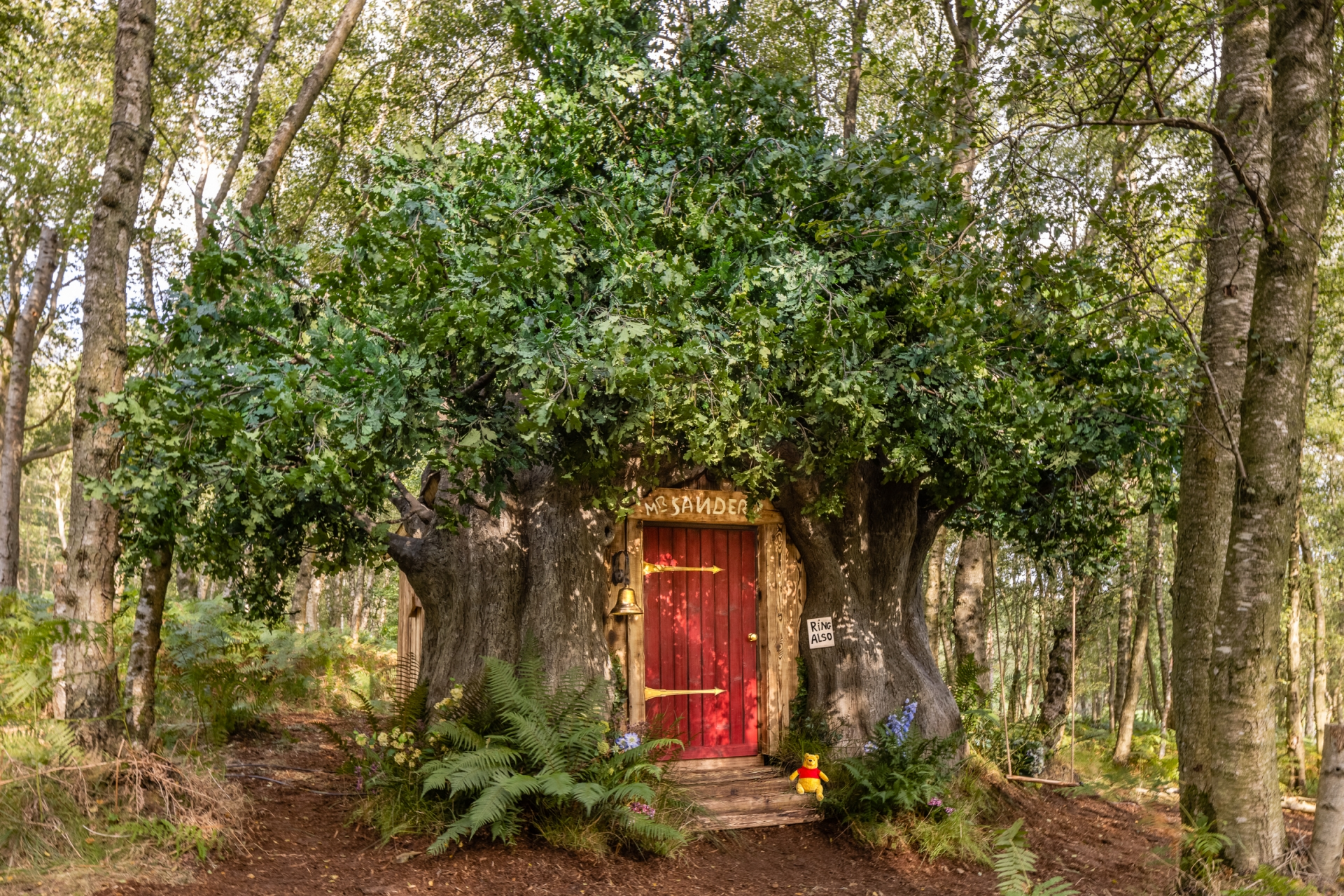 Winnie the Pooh inspired house in the Hundred Acre Wood is available to book on Airbnb as part of Disney's 95th Anniversary celebrations