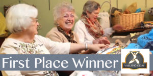 LSS wins 1st place in the Valuing Gray Video Contest
