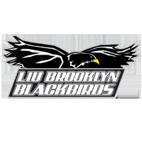 LIU Brooklyn Logo