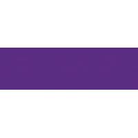 Louisiana State University Logo
