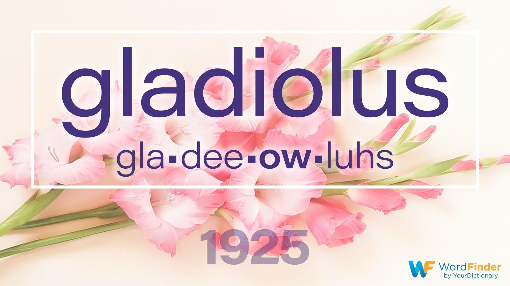 national spelling bee winning word gladiolus 1925