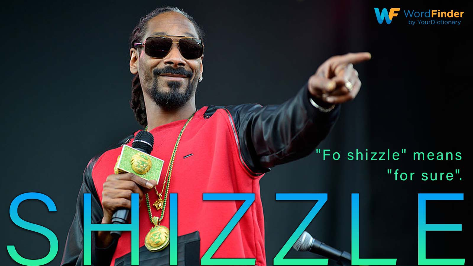 definition shizzle Snoop Dogg